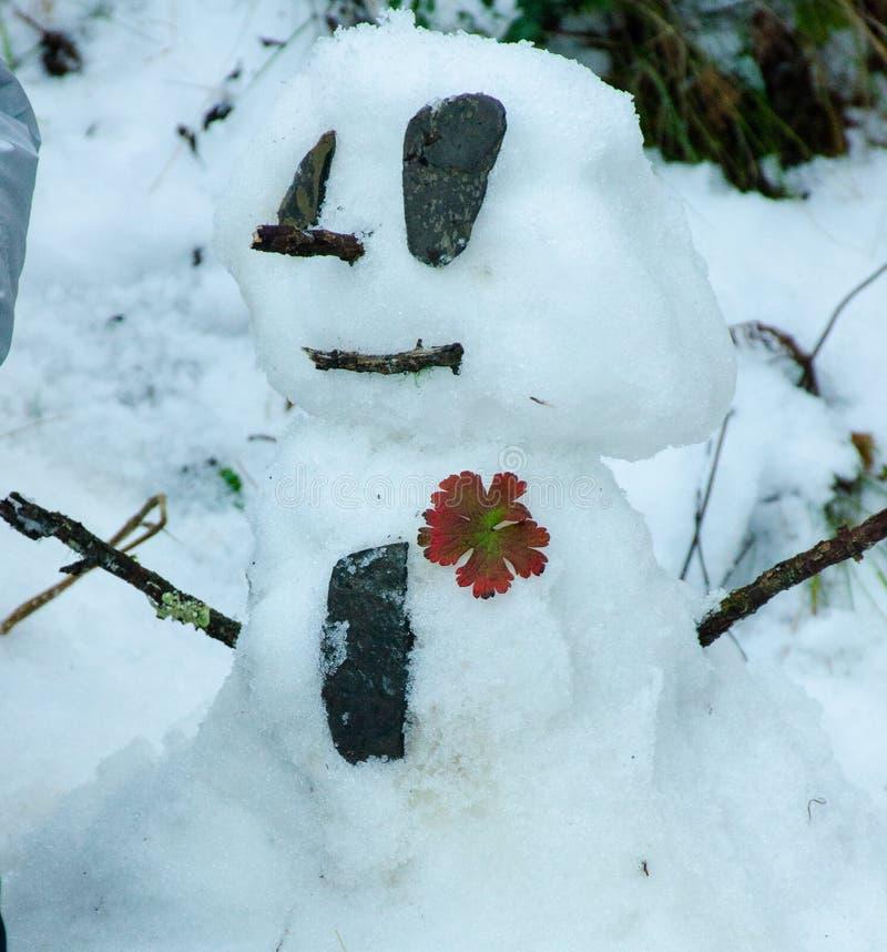 Mini Frosty stock foto's
