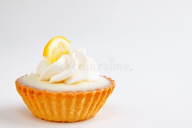 Mini galdéria do limão imagem de stock royalty free