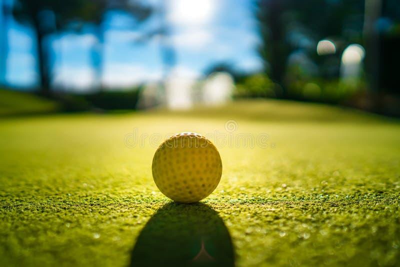 Mini Golf ingiallisce la palla su erba verde al tramonto fotografie stock