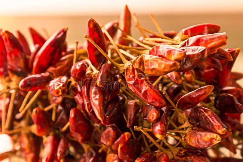 Mini hete de zon gehele vruchten van Spaanse peperpeulen droge een van het het ontwerpmenu van het stapelontwerp het close-upbasi stock fotografie