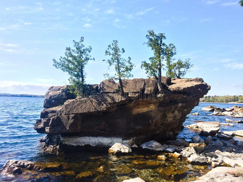 Mini Island med Mini Trees royaltyfri bild