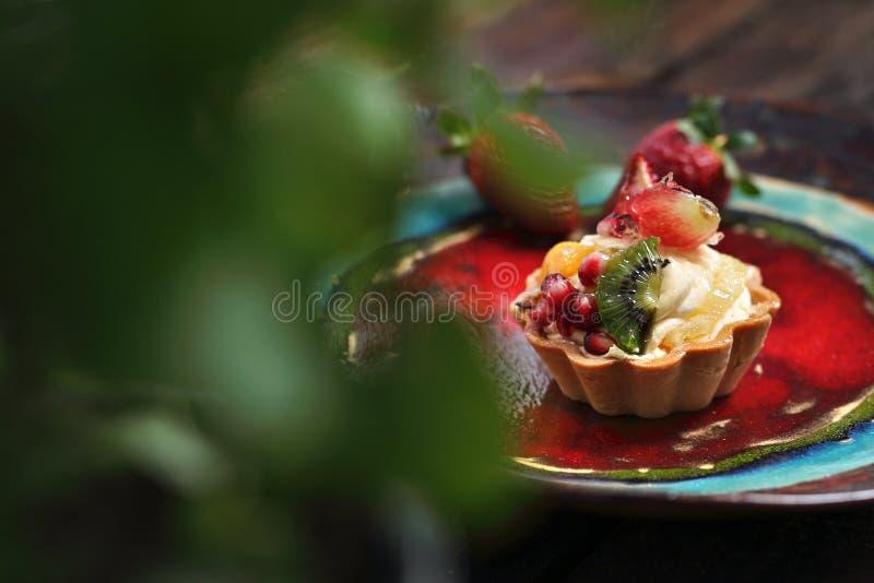 Mini- kaka för frukt med vaniljsåskräm söt efterrätt arkivfoto