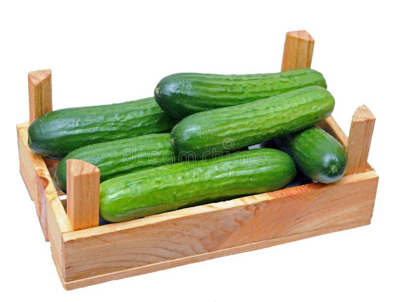 Download Mini komkommer stock afbeelding. Afbeelding bestaande uit gezond - 29511263