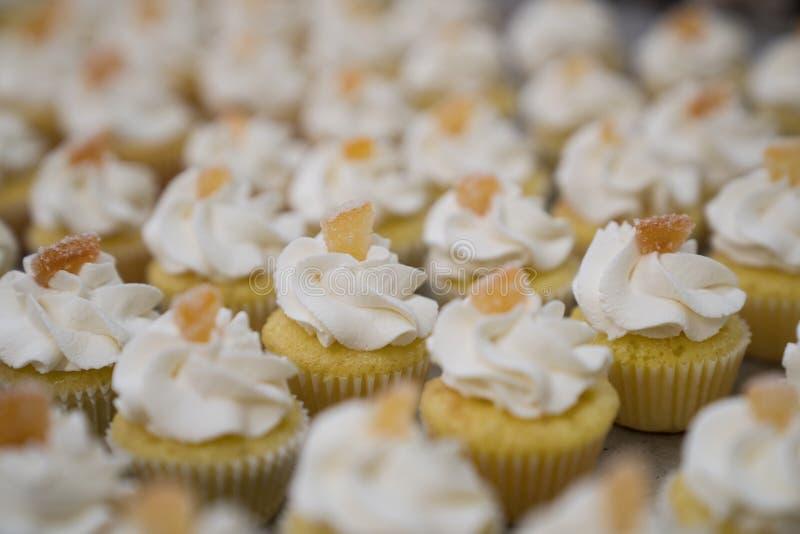 Mini Lemon Cupcakes mit kandierter Zitrone stockfotos