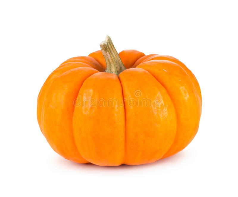 Mini Orange Pumpkin Isolated auf Weiß stockfotografie