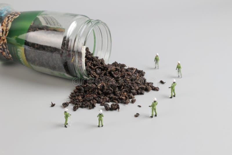 Mini pacnięcie drużyna z zrzuconym herbata fotografia stock