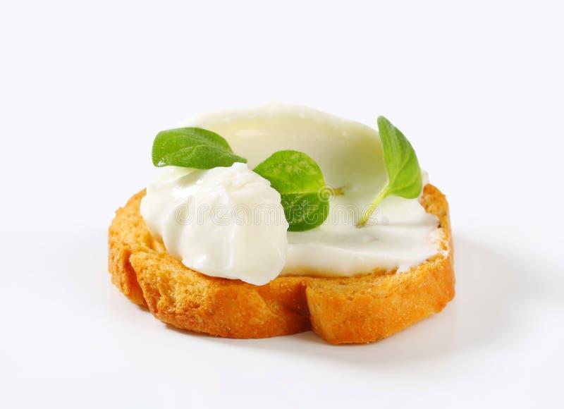 Mini pain grillé avec le fromage fondu photographie stock libre de droits