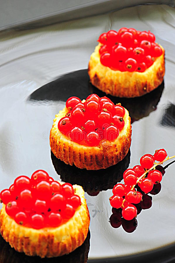 Mini pasteles de queso de la pasa roja foto de archivo libre de regalías