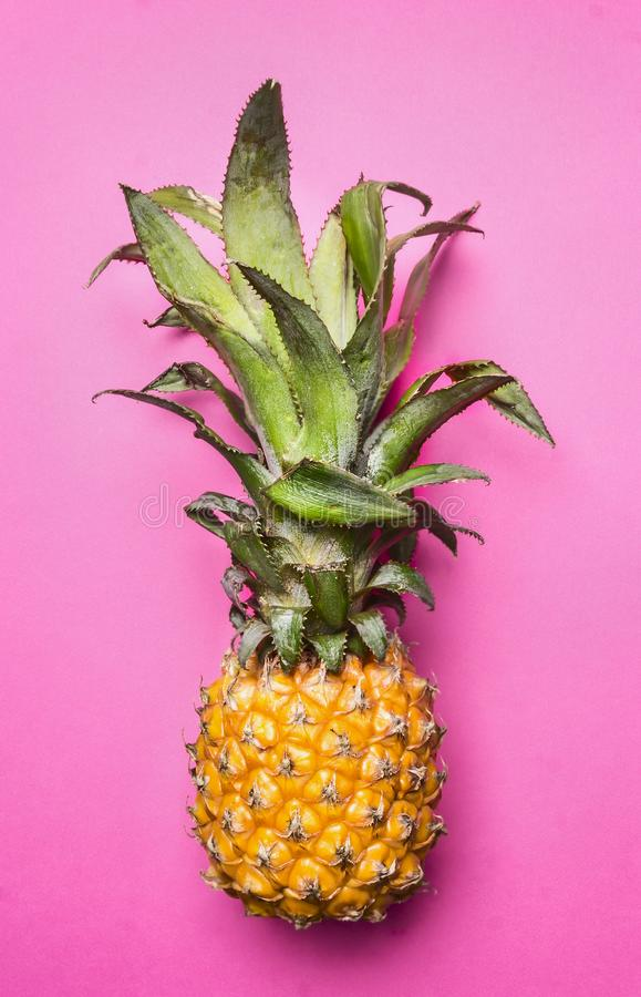 Mini pineapple on bright pink background, the concept of trendy fruit, top view. Mini pineapple on a bright pink background, the concept of trendy fruit, top royalty free stock photos