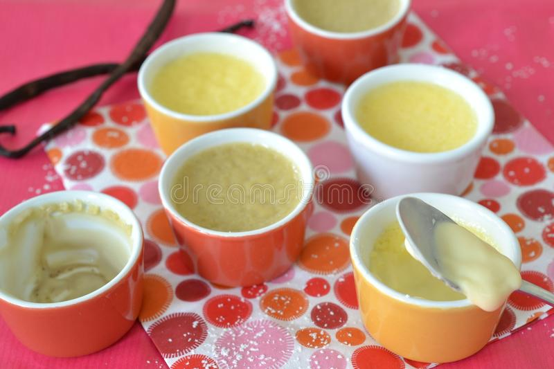 Mini puddings. Puddings with different flavors in mini pots royalty free stock photography