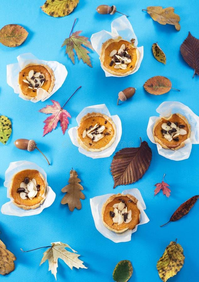 Mini Pumpkin Tarts stockbilder