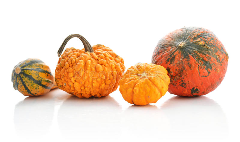 Mini Pumpkins immagini stock libere da diritti
