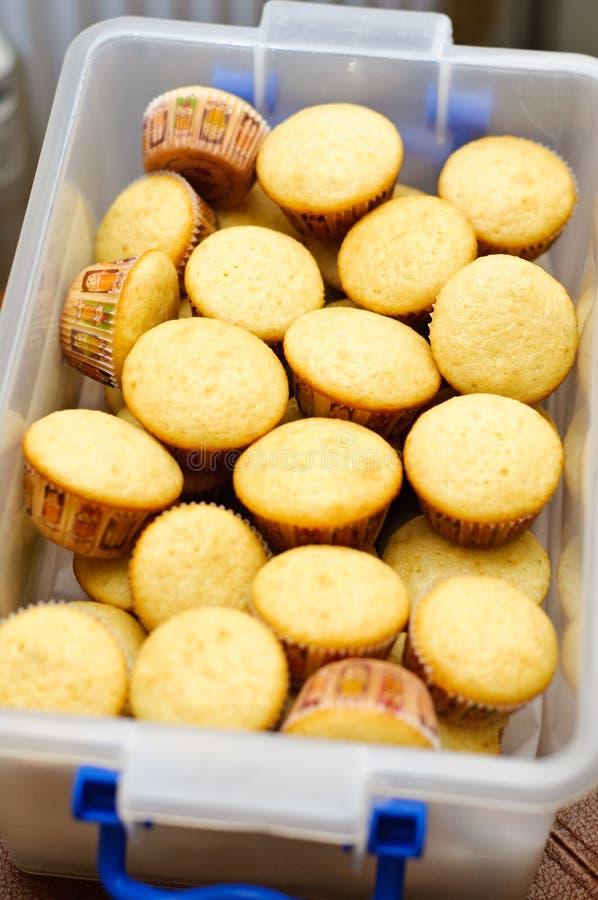Mini queques da baunilha fotografia de stock