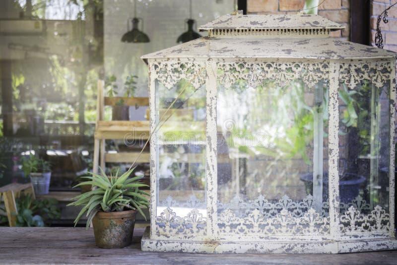 Mini roślina garnki dekorujący w ogródzie obrazy stock