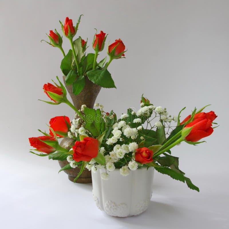 Mini rosas rojas en pote fotos de archivo
