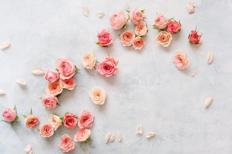 Mini Roses On Textured Background bonito fresco fotografia de stock