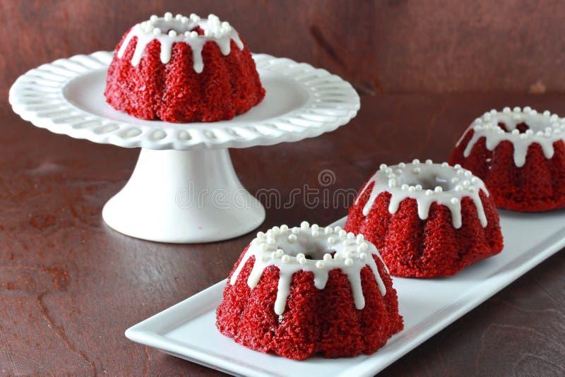 Mini rotes Samt bundt backt auf weißer Platte auf grauem Hintergrund zusammen stockbilder