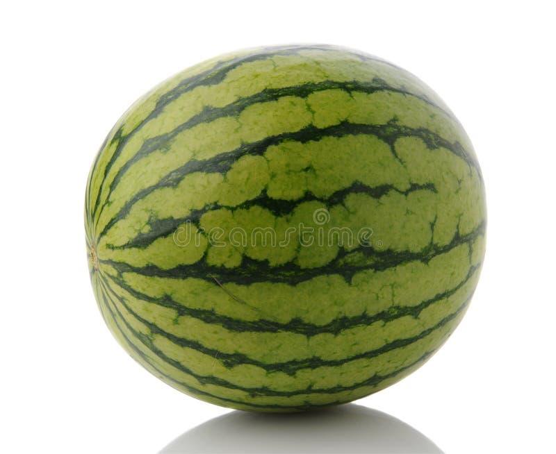 Mini Seedless Watermelon inteiro imagem de stock royalty free