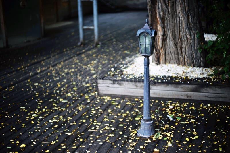 Mini- streetlight royaltyfri foto