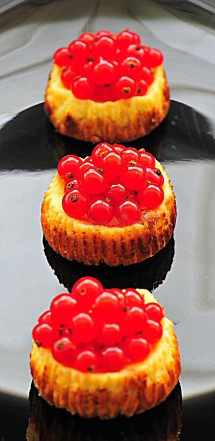 Mini tartas del pastel de queso de la pasa roja imágenes de archivo libres de regalías
