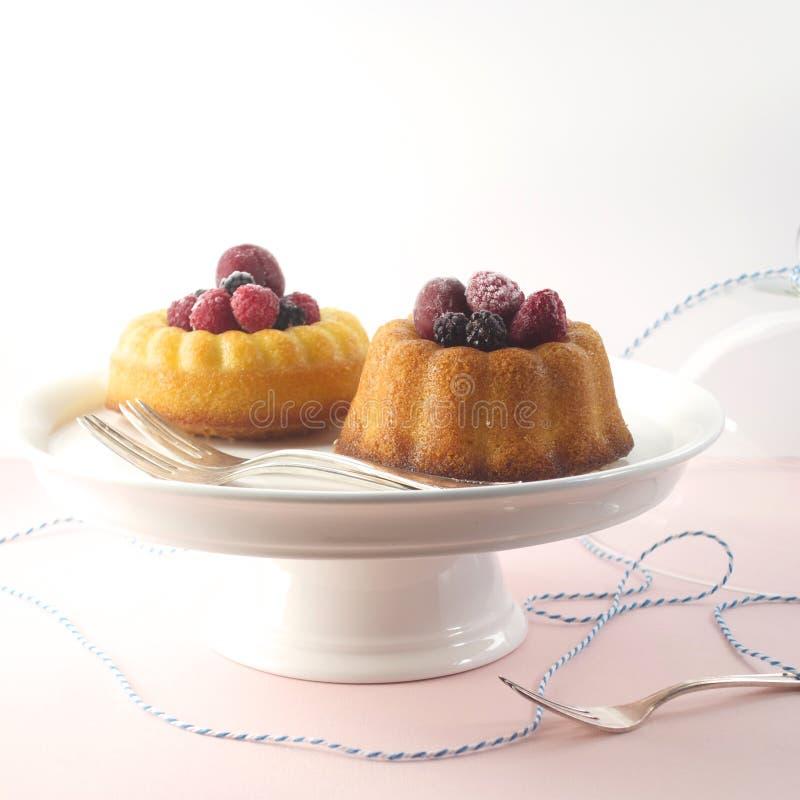 Mini tortas del bundt fotos de archivo libres de regalías