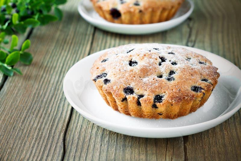 Mini torte di mirtillo fresche casalinghe sul piatto bianco immagine stock