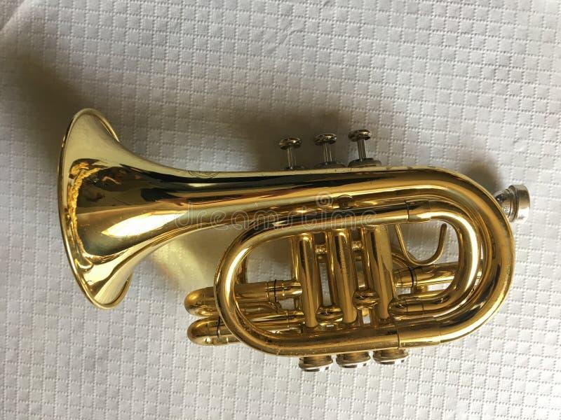 Mini trombeta clássica, no fundo branco fotos de stock