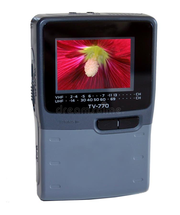 Mini TV Avec La Fleur Photographie stock libre de droits