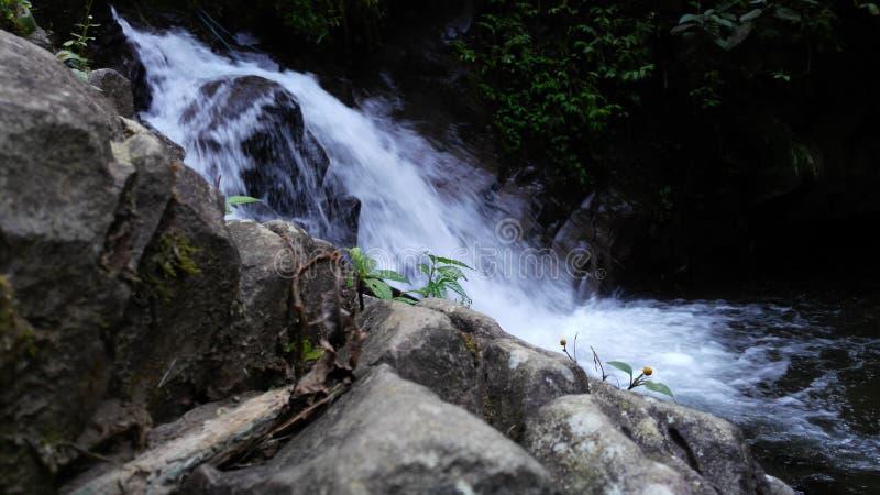 Mini Waterfall in Capolaga Indonesien lizenzfreie stockfotos