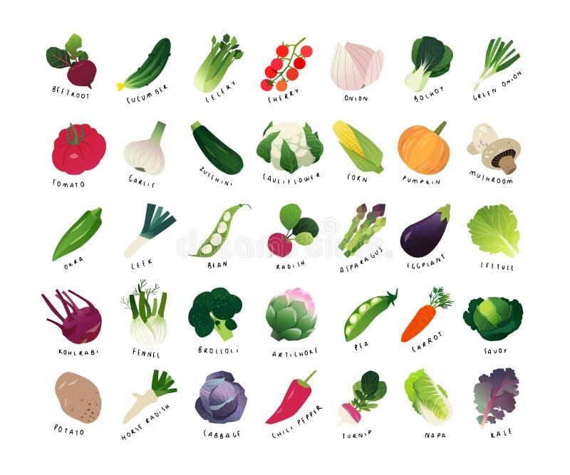 Miniaturas do clipart de vegetais comuns ilustração do vetor