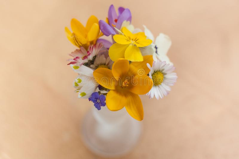 A miniature bouquet of spring flowers royalty free stock photo