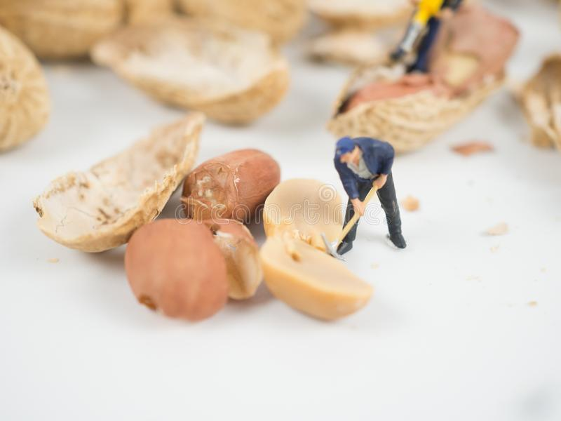 Miniature engineer is working on nuts. stock photo