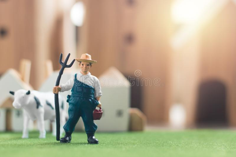 Miniature Farmer and cow figure model on Simulation grass, Wooden house in the background royalty free stock images