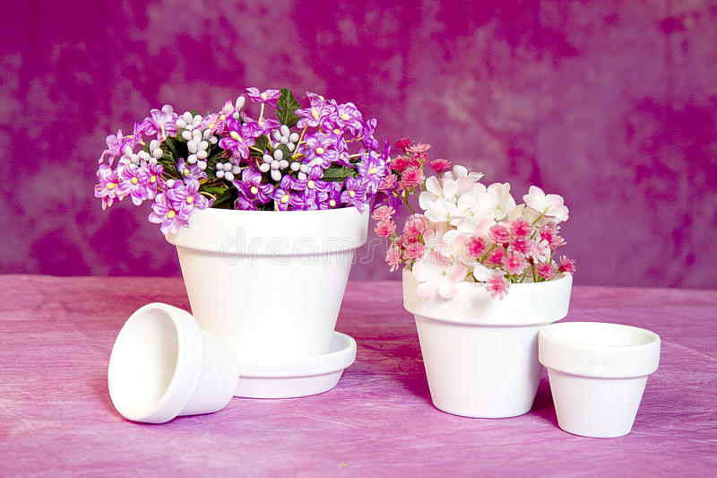 Miniature flower pots and flowers stock image image of flora download miniature flower pots and flowers stock image image of flora clusters 65777749 mightylinksfo