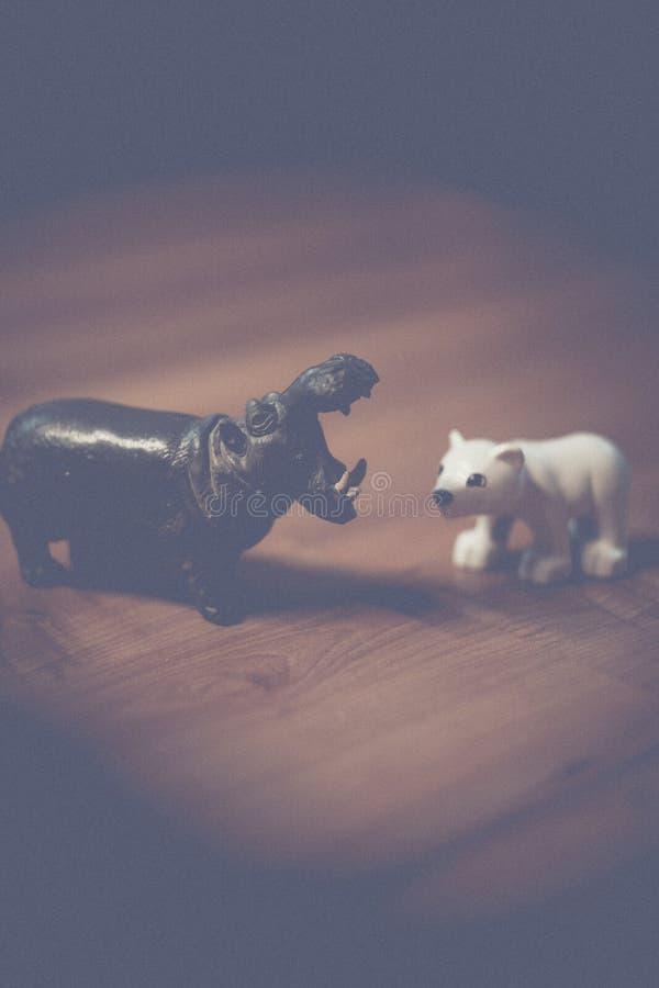 Miniature hippo and polar bear royalty free stock image