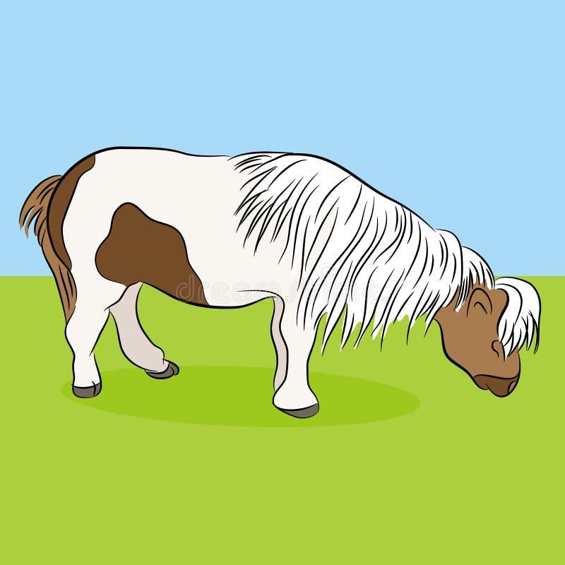 Download Miniature Horse stock vector. Image of pony, black, miniature - 40088030