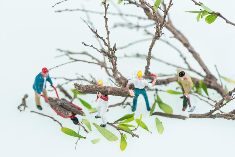 Miniature lumberjacks working together in cutting and felling trees top view close-up stock photos