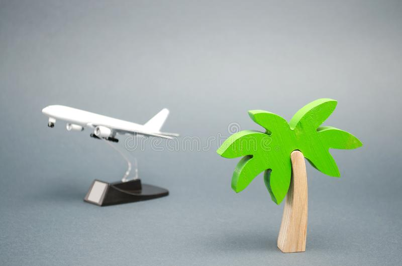 Miniature palm tree and a toy airplane. The concept of planning a summer or winter vacation. Family rest. Hot tours. Available. Offers. Aircraft. Plane stock photo