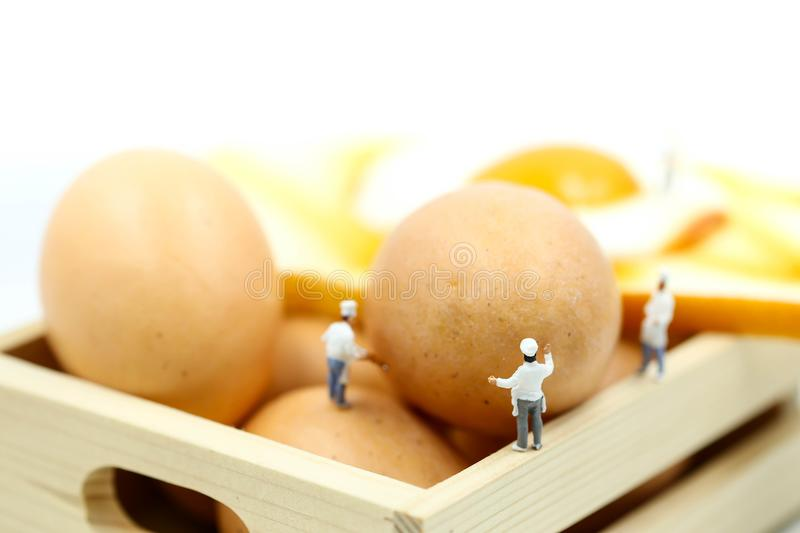 Miniature people : Chef cooking with Eggs for Breakfast with toast. royalty free stock image