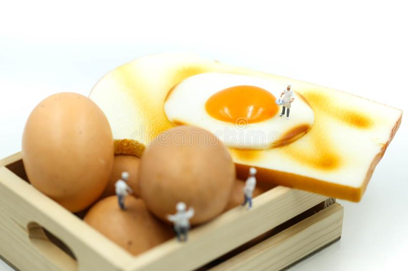 Miniature people : Chef cooking with Eggs for Breakfast with toast. stock photo