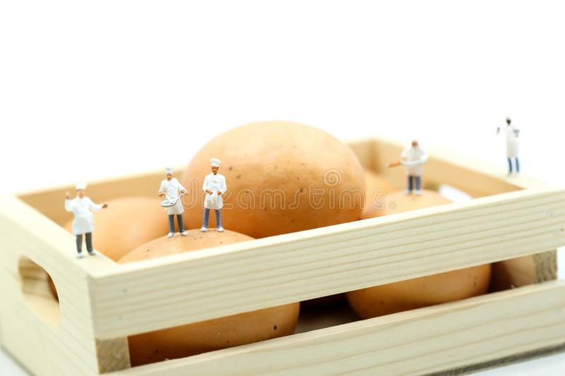 Miniature people : Chef during cooking and working with eggs. royalty free stock images