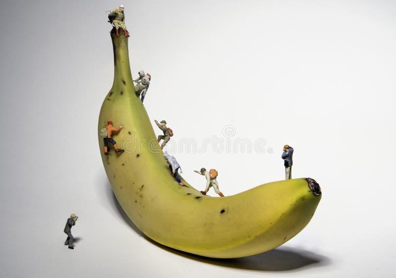 Miniature People Climbing A Banana with Photographers stock photo