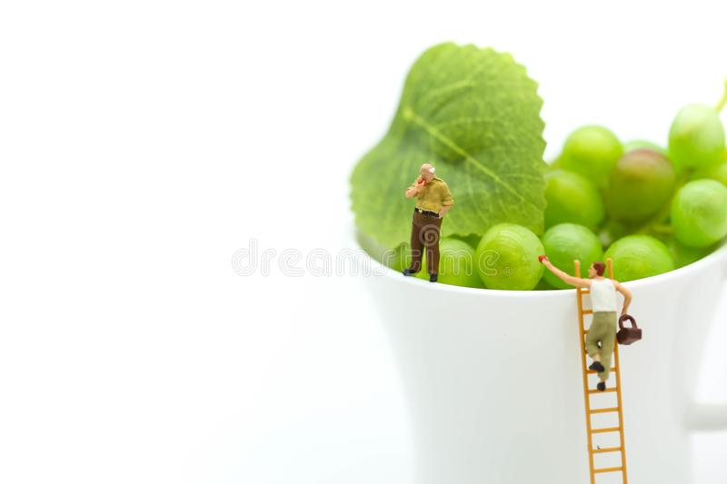 Miniature people : man on ladder with cup of grape,business and royalty free stock photo