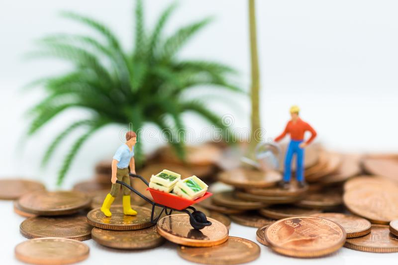 Miniature people : Men use vegetable carts and walking on coins. Image use for business market concept.  royalty free stock images