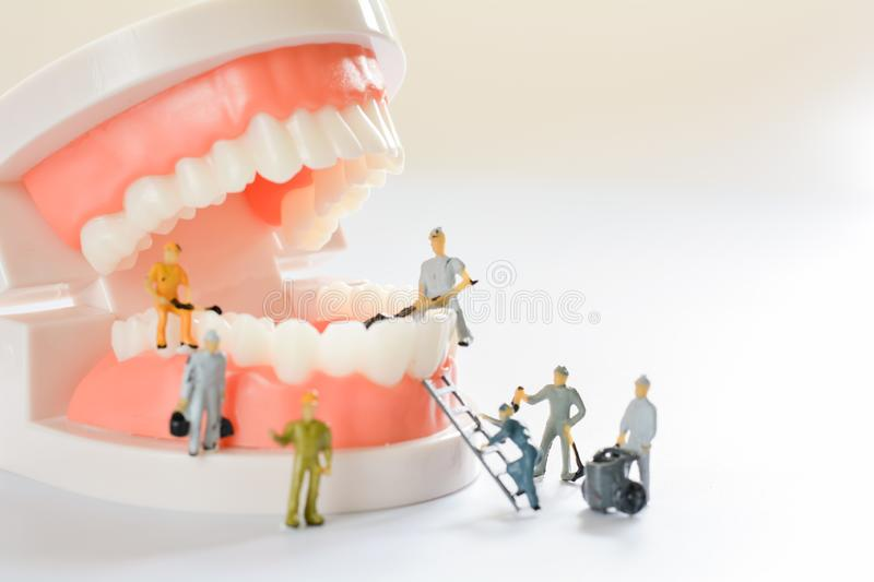 Miniature people, small model human figure clean model teeth with copy space. Medical and dental concept. Team work on dental care. Close up royalty free stock photography