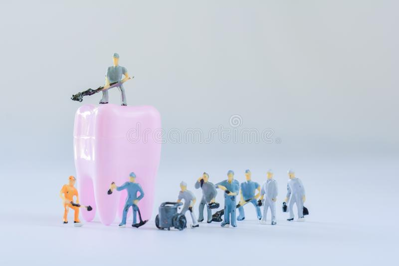 Miniature people, small model human figure clean pink tooth with copy space. Medical and dental concept. Team work on dental care. Miniature people, small model royalty free stock photo