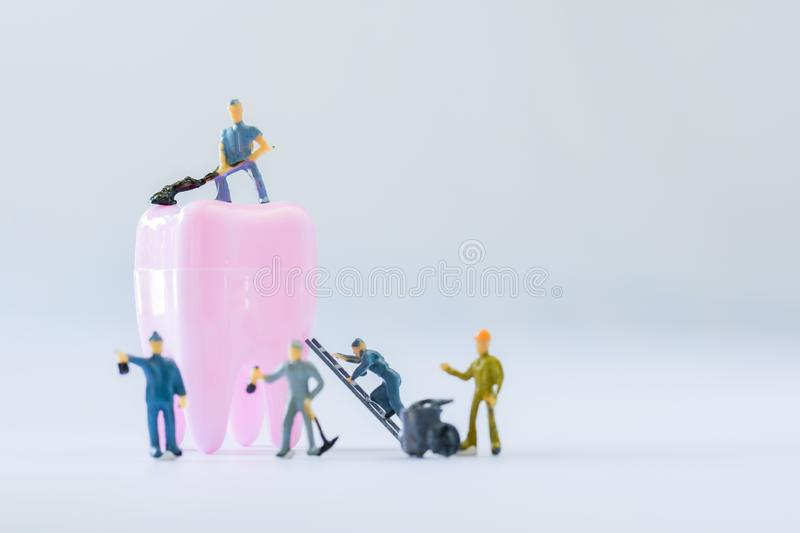 Miniature people, small model human figure clean pink tooth with copy space. Medical and dental concept. Team work on dental care. Selective focus stock photos
