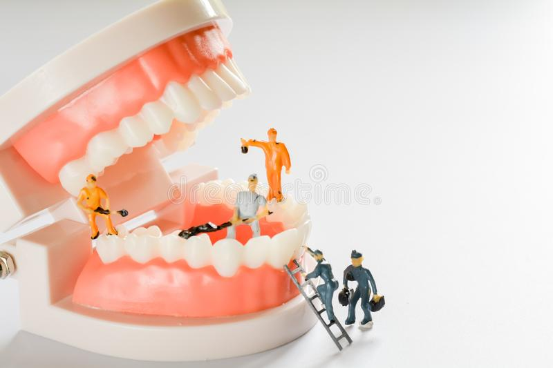 Miniature people, small model human figure clean model teeth with copy space. Medical and dental concept. Team work on dental care. Close up stock image