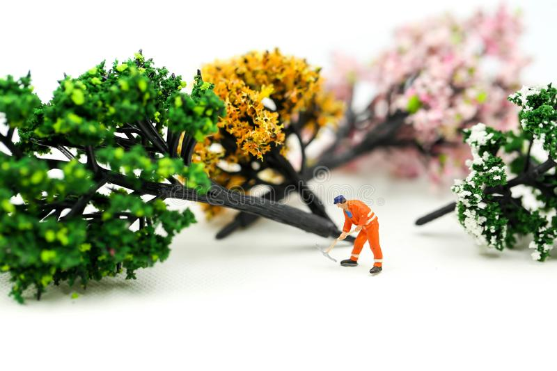Miniature people : worker using a chainsaw to cut down a large beech tree, Deforestation concept.  royalty free stock photos