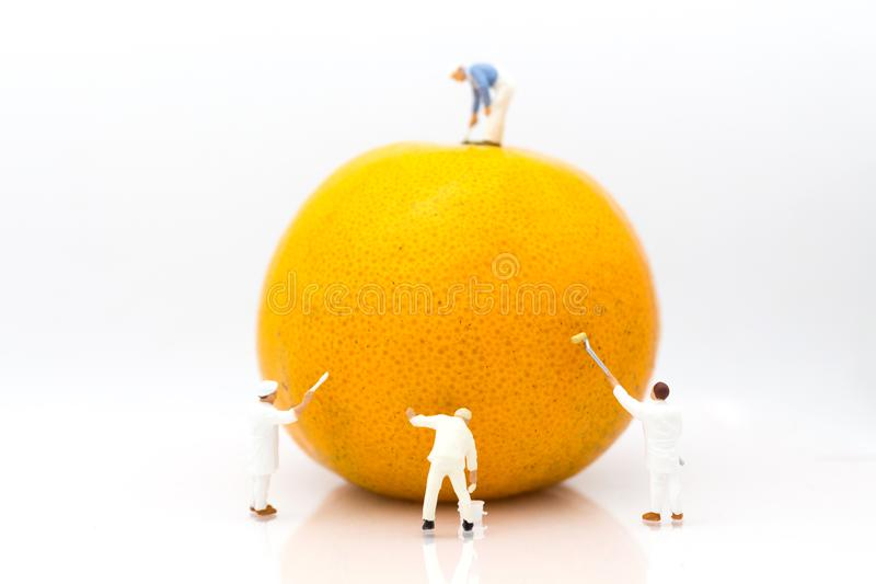 Miniature people: Workers are painting color on orange peels. Image use for creativity, business concept royalty free stock photography